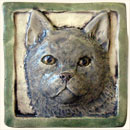 grey short hair cat tile