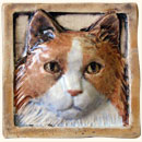 brown and white cat tile