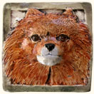 Pomeranian Dog Tile
