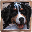 Bernese dog tile