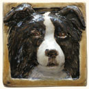 Border Collie tile