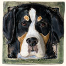 Mountain Dog Tile